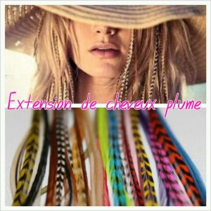 """Extensions de cheveux """"plume"""""""