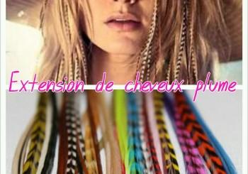 Extensions de cheveux «plume»